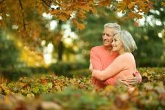 白种人长辈夫妇 免版税库存照片