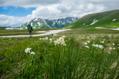 白种人结算天数highmountains山10月俄国星期日 免版税库存照片