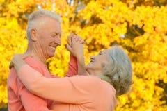 白种人年长夫妇 免版税库存照片