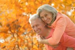 白种人年长夫妇 库存照片