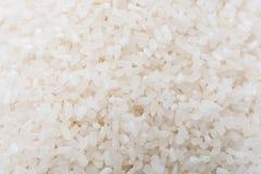 白米、自然长的米五谷背景的和纹理 免版税库存照片