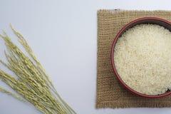 白米和稻在白色背景 免版税图库摄影