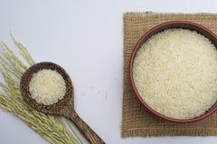 白米和稻在白色背景 库存图片