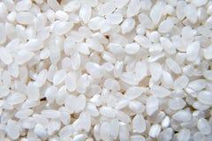 白米背景,未煮过的未加工的谷物,宏观特写镜头 库存图片
