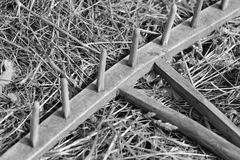黑白罕见的犁耙 库存照片