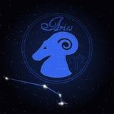 白羊星座黄道带的占星术星座 免版税库存图片