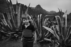 白肤金发恼怒的滑稽的男孩是在多汁植物背景与大叶子的 北京,中国黑白照片 免版税库存照片