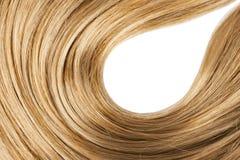 白肤金发的人的发光的头发 免版税库存照片