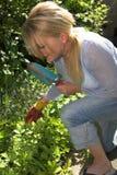 白肤金发的从事园艺的俏丽的妇女 库存照片