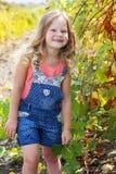 白肤金发的俏丽的儿童女孩在秋天葡萄园里 库存照片