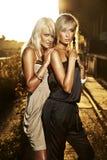 白肤金发的典雅的二名妇女 免版税库存照片