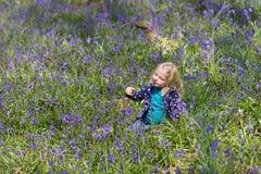 白肤金发的在Hallerbos森林的女孩嗅到的会开蓝色钟形花的草 免版税库存照片