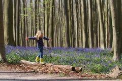 白肤金发的女孩和会开蓝色钟形花的草在Hallerbos森林 免版税库存照片