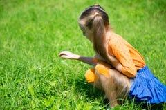 白肤金发的女孩捉住一只蚂蚱 免版税图库摄影