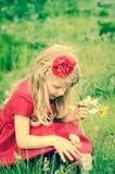 白肤金发的女孩用蒲公英 库存图片
