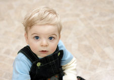 白肤金发的子项 免版税库存照片
