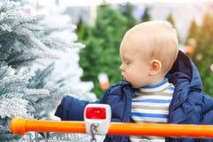 白肤金发的宝贝在超级市场推车坐并且选择一棵圣诞树在商店 免版税库存照片