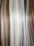 白肤金发的棕色黑发纹理 图库摄影
