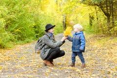 白肤金发的男孩给他的母亲黄色叶子花束  秋天fo 图库摄影