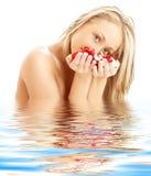 白肤金发的红色玫瑰白色 免版税库存图片