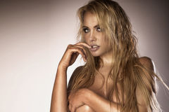 白肤金发的美丽的妇女性感的画象  免版税库存图片