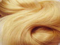 白肤金发的聚焦头发纹理背景 库存图片