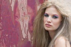白肤金发的聪慧的构成妇女 库存照片