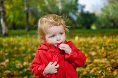 白肤金发的逗人喜爱的女孩一点 库存照片