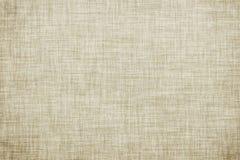 白色上色了亚麻制纹理或葡萄酒帆布背景 皇族释放例证