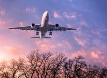 白色乘客飞机在紫色天空飞行 库存图片