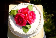 白色乳脂状的可口蛋糕特写镜头 免版税库存照片