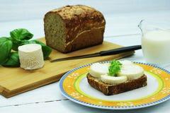 白色乳酪 免版税库存照片