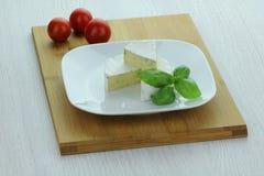 白色乳酪 库存照片