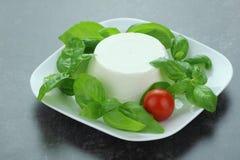 白色乳酪 免版税库存图片