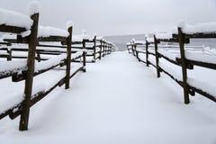 白色五十片树荫在山上面的 免版税库存图片