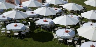 白色伞 库存图片