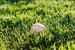 白色使用了在新鲜的绿草的棒球 免版税库存图片