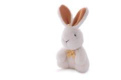 白色兔子玩具玩偶被隔绝在白色 库存图片