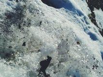 白色冬天闪烁 库存图片
