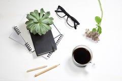 白色办公室桌面顶视图有植物、咖啡杯、玻璃和文具项目的 嘲笑 图库摄影