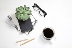 白色办公室桌面顶视图有植物、咖啡杯、玻璃和文具项目的 嘲笑 免版税库存照片