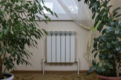 白色加热的幅射器、窗口和室内植物 库存图片