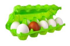 白色十二个的鸡蛋和一个棕色或红色在白色背景被隔绝的关闭的开放绿色塑料包裹  免版税库存照片