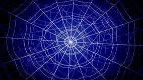 白色同心蜘蛛网在蓝色背景急剧跳跃并且黏附 股票视频