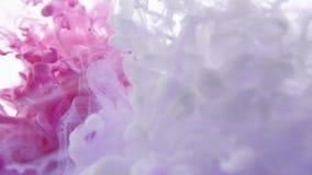 白色和桃红色墨水在水中被混合 要求流动和有机神色的背景或覆盖物的用途 影视素材