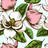 白色和桃红色木兰花无缝的样式 库存例证