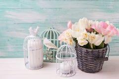 白色和桃红色郁金香和水仙在灰色桶 库存照片