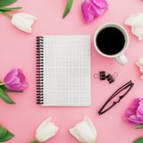 白色和桃红色郁金香开花与杯子咖啡、笔记本和玻璃在桃红色背景 博客作者概念 平的位置,顶视图 库存图片