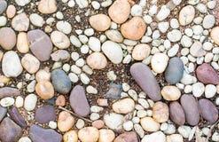 白色和棕色石渣在庭院里 免版税图库摄影