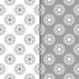 白色和灰色套花卉背景 仿造无缝 免版税库存图片